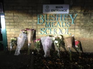 bushey-meads-school